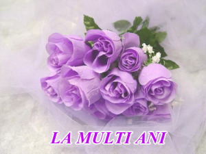 1257471579-la-multi-ani